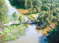 Du lịch sinh thái Gáo Giồng - Đồng Tháp
