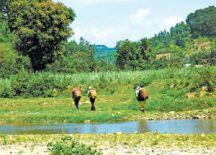 Khám phá Khánh Sơn (Khánh Hòa)
