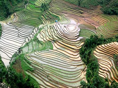 Kỳ thú ruộng bậc thang, Lào Cai