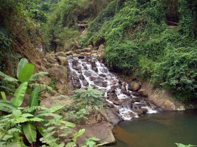 Rừng Quốc gia Ba Vì - Một thoáng bình yên