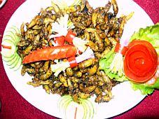 Độc đáo món ve sầu ở Vĩnh Long